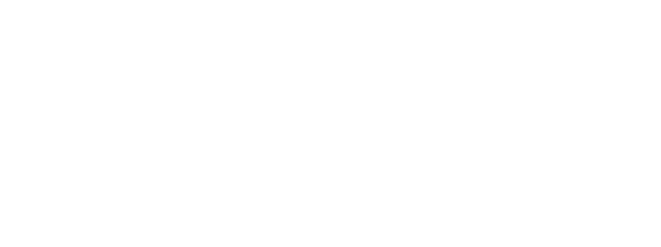 Nancy Bs House of Lights Logo