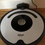 Happy 2021!  Roomba Gal – Part 1